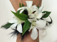 White Dendrobium Orchid Wrist Corsage with Black Feathers