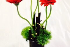 black bamboo, red daisies 2